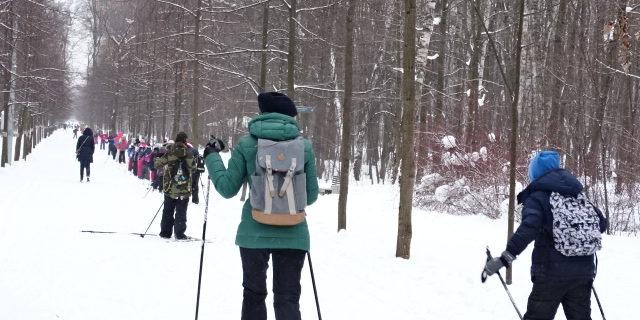Les primaires font du ski