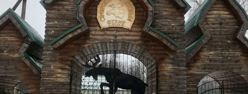 Les 6èmes SIR voyagent à Kostroma